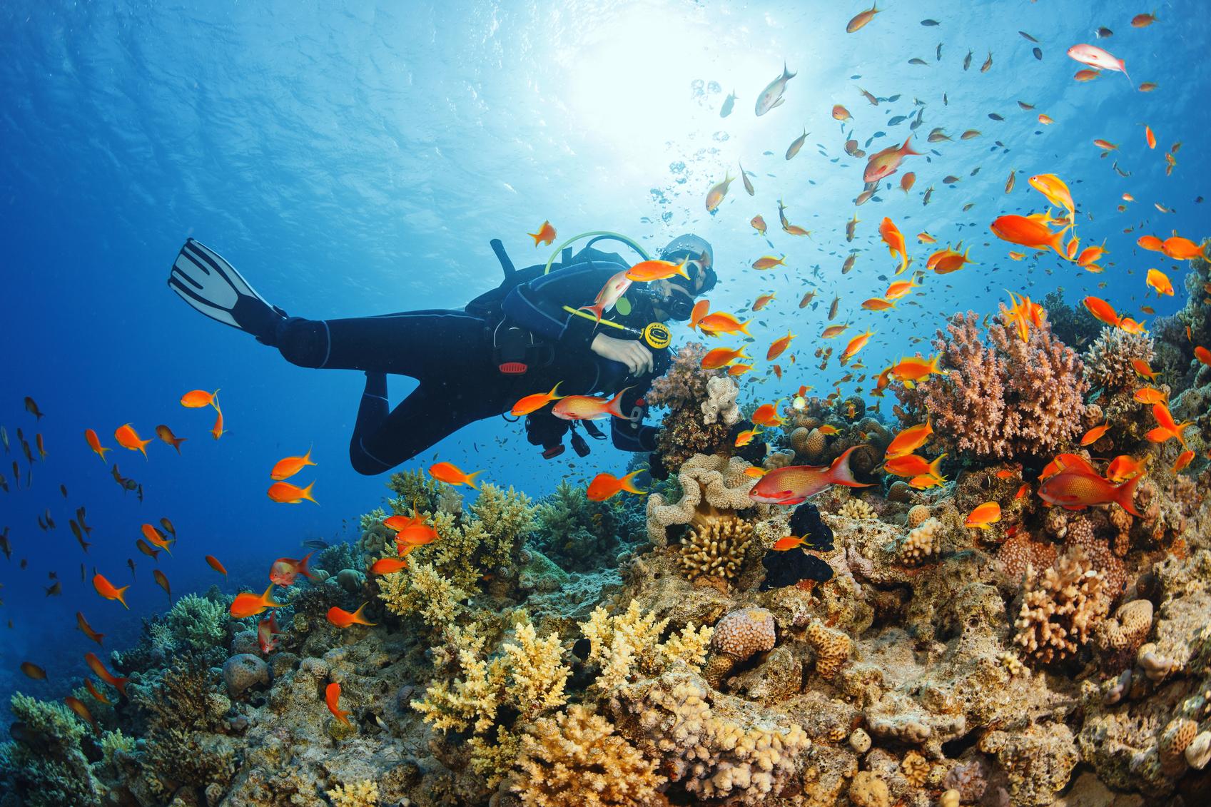 diving-snorkeling